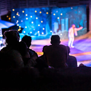 A back image of silhouettes of audience members in a dark outdoor theatre. 2 blurry performers are spotlighted (upper right) on a wooden stage, a blurry and twinkle-lit background prop and slatted partitions complete the backdrop.